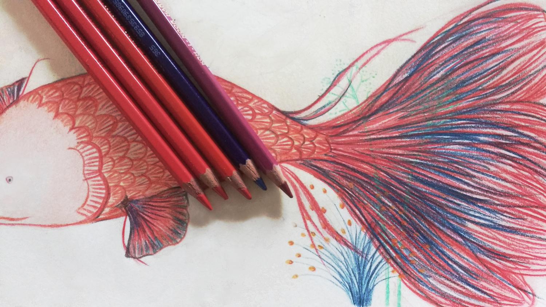 Dibujo De Un Lapiz De Color: Lápices, Ceras Y Otros Artículos Para Bellas Artes